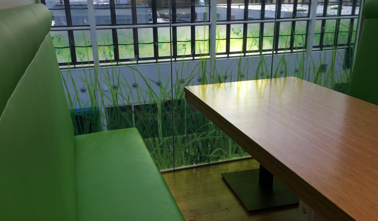 Glasdecoratie Clusius College Alkmaar